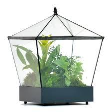 shop h potter 12 in x 16 in metal terrarium at lowes com