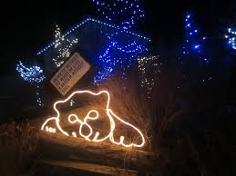 Christmas Lights Columbus Ohio Violet U0027s Silver Lining Things To Do In Ohio Wildlights At