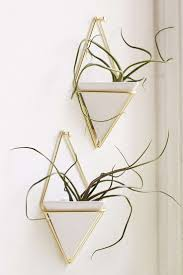 Wall Planters Indoor by 28 Best Images About Living With Plants On Pinterest Copper