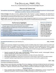 Executive Resume Template by Functional Executive Resume Builder Format Sles Template Free