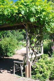 what is the difference between an arbor trellis and pergola