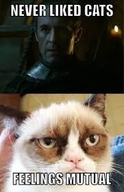 Top 100 Internet Meme - top 100 des meilleurs meme de game of thrones castle keep