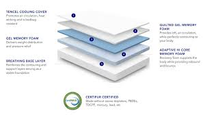 Hi Can Bed by Nectar Mattress Review L Nectar Sleep L Forever Warranty