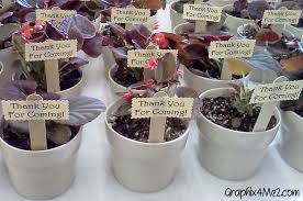coed baby shower themes baby shower favors for couples baby shower plant favors1 baby