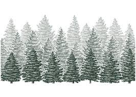 steven noble illustrations pine trees