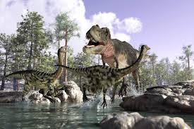dinosaur wallpaper murals wallpaper attack of t rex children square wall murals