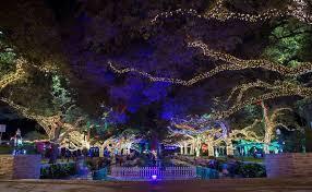Zoo Lights Woodland Park Zoo Lights