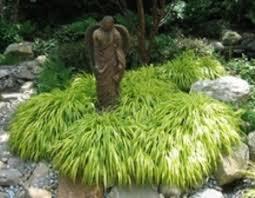 garden design garden design with best ornamental grasses and