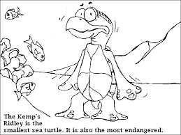 turtle trax colouring pages