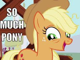 Know Your Meme Brony - my little brony friendship is magic my little pony friendship