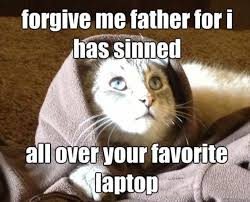Cat Laptop Meme - forgive me father for i has sinned all over your favorite laptop