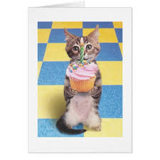 Cat Birthday Cards Cupcake Cat Birthday Card Zazzle Com