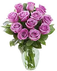 purple roses kabloom bouquet of 12 fresh cut purple roses