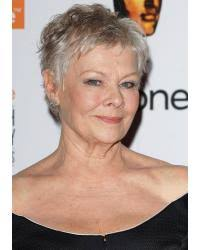 how to get judi dench hairstyle judi dench mature hairstyles