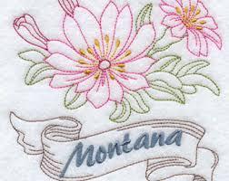 State Flower Of Montana - bitterroot etsy