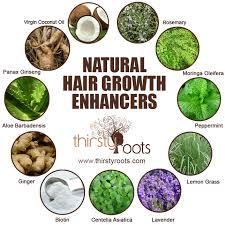 Natural Hair Growth Stimulants | 11 natural hair growth enhancers