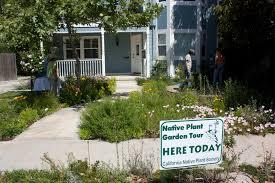 nevada native plant society cnps orange county chapter california native plant society