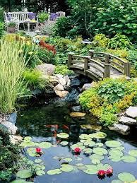 165 best water gardening images on pinterest landscaping garden