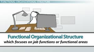 what is organizational structure of management types u0026 examples