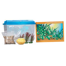 Hamster Cages Petsmart Reptile Supplies Reptile Accessories U0026 Products Petsmart