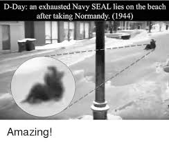 D Day Meme - d day an exhausted navy seal lies on the beach after taking normandy