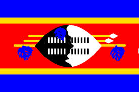15 of the world u0027s strangest flags swaziland flag funny flags