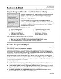 Vp Finance Resume Examples by Finance Executive Resume Finance Executive Resume Resume Template