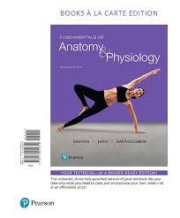 Essentials Of Human Anatomy And Physiology Notes Martini Nath U0026 Bartholomew Fundamentals Of Anatomy U0026 Physiology
