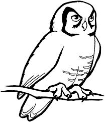 owl clipart black white 28300 clipartion