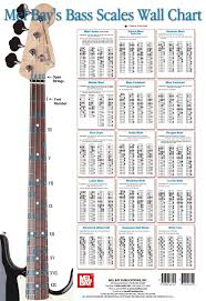 Best 25 Bass Guitar Lessons Ideas On Pinterest Bass Guitar