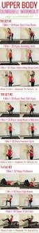 best 25 dumbbell back workout ideas on pinterest dumbbell