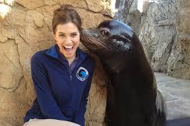Lion Meme - adorable sea lion and girl s allison williams are now a meme