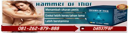 agen jual obat hammer of thor di palembang obat hammer