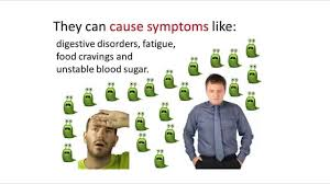 parasite cleanse diet u2013 foods to eat and foods to avoid youtube