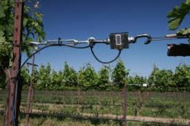 Trellis Wine Tension On The Grapevine Trellis Tension Monitoring Offers