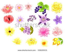 All About Flowers - flower set stock vector 538105531 shutterstock
