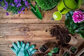 creative gardening tips for the spring season