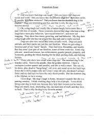 how to write a good college paper how to write a good introduction for an essay trueky com essay sample essay examples sample narrative essay high school narrative essay high school resume narrative essays examples