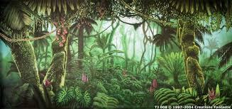 jungle backdrop backdrop tj008 tropical jungle 8