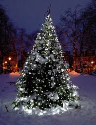 outdoor led spirals trees ftled for outdoorsled tree