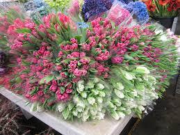Wholesale Flowers Near Me Sf Flower Mart In San Francisco Ca