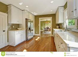 Kitchen Green Kitchen Colors Stock Green Kitchen Room With White Storage Combination Stock Photo