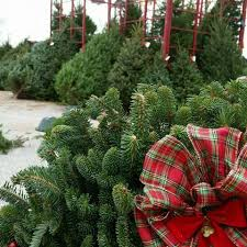 jones family farm market and christmas tree farm home facebook