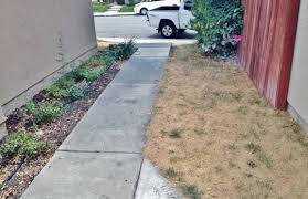 water saving archives orange county landscape contractor