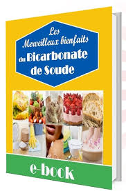 livre cuisine pdf gratuit télécharger destructeur de diabet