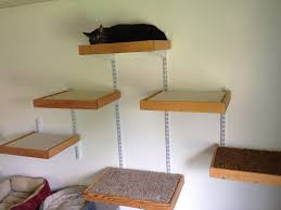 wall mounted cat stairs the latest addition to the foster house fabulous felines