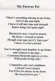 the loss of a pet loss of a pet quotes search thoughts