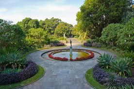 Botanic Garden Sydney Royal Botanic Gardens Sydney Australia Highlights Experience