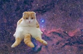 Sad Cat Memes - space memes sad cat in space