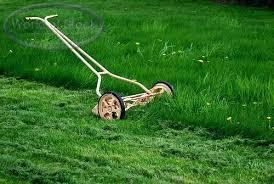 Lawn Mower Meme - used push lawn mower buildingsmart info